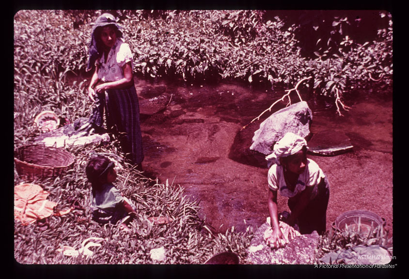 Women washing clothes, in stream which produces biting flies,in endemic region.