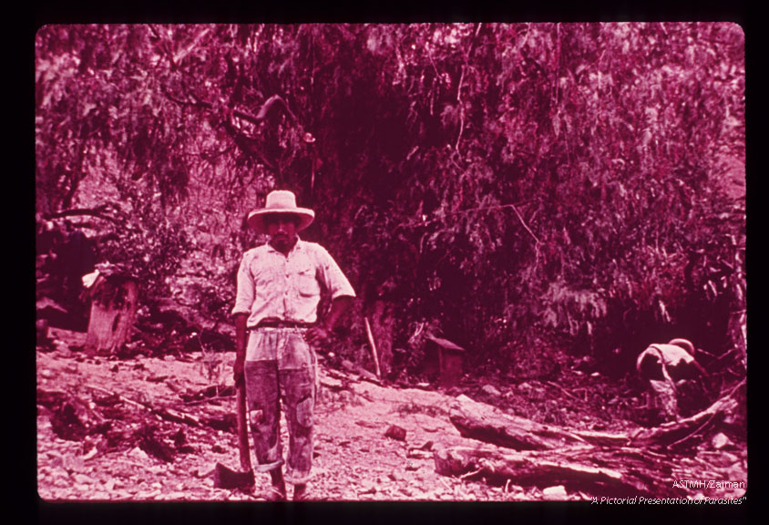 Epidemiology, typical peasant owner of adobe house in upper Maranon valley. Many Trypanosoma cruzi infected triatomines were found in his house and in the tree behind him.